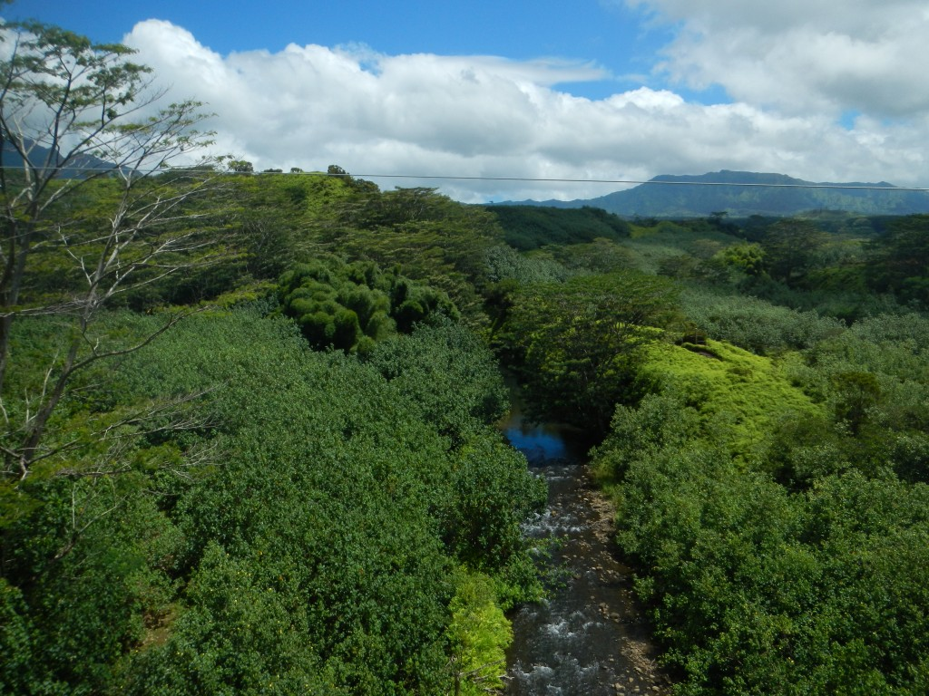 The valley we zipped over with Kauai Backcountry Adventures