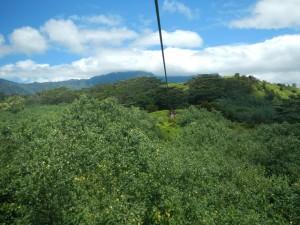 One of the ziplines at Kauai Backcountry Adventures