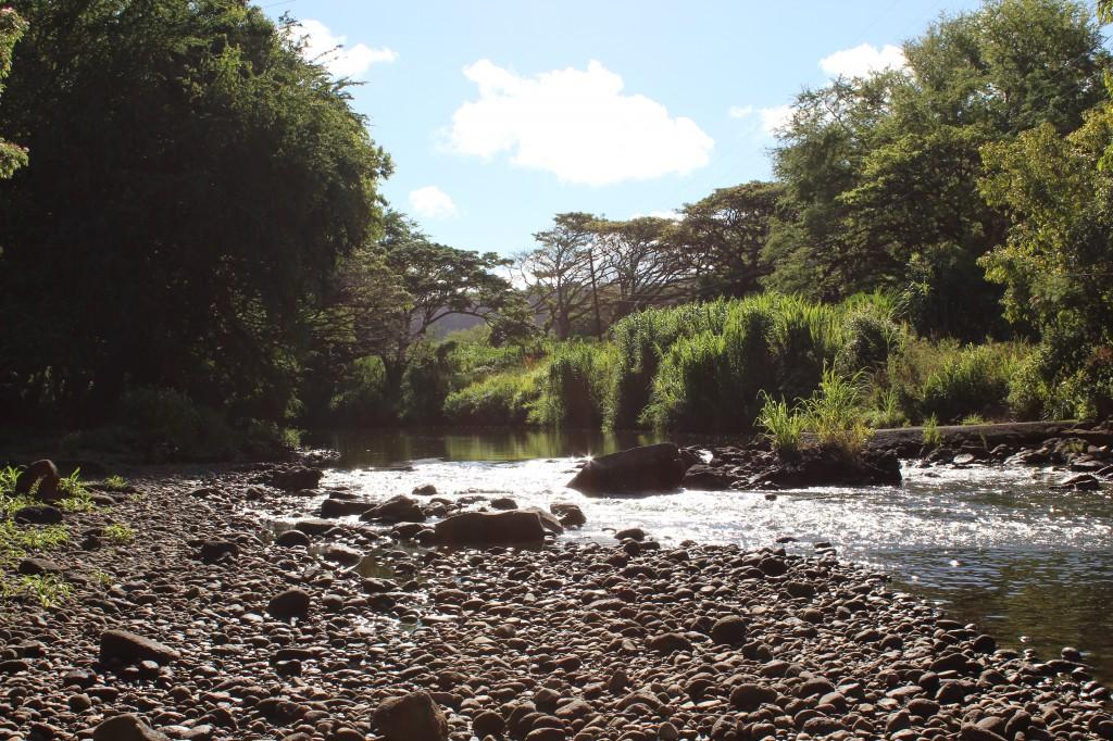 Hawai'ian creek bed in Kaua'i