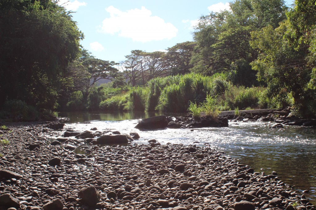 the creek bed in kauai, discovered while secret roading