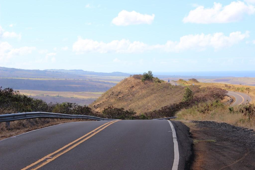 the road up to the Waimea Canyon & Na'Pali Coast lookouts, Kauai, Hawaii
